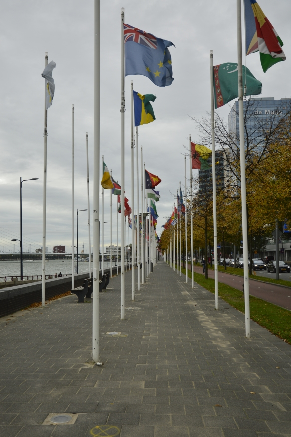 Ave of Flags