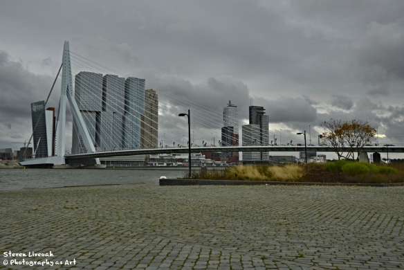 Erasmusbrug Bridge 1